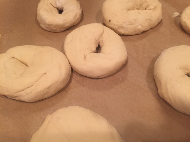 Bagels rising on parchment paper