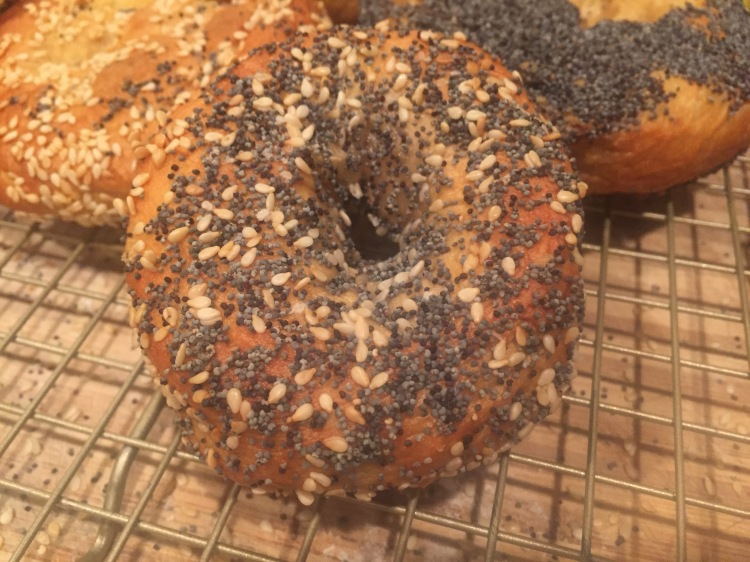 Homemade bagels, montreal bagel recipe, NY bagel recipe, bagels at home