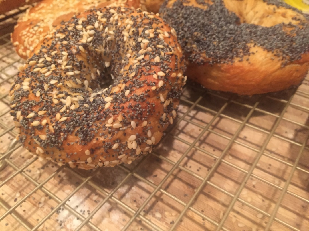 home made new york style bagels,